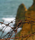 la pointe du Hoc - normandy